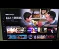 Netflix many languages