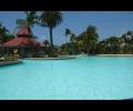 Big Swimming Pool with pool bar